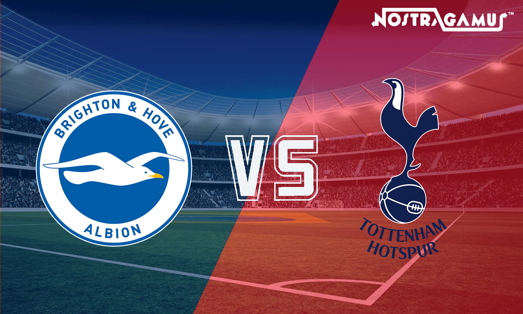 EPL 2019 Match Predictions: Tottenham vs Brighton